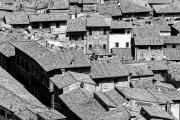 Dächer der Toskana