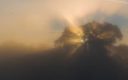 Die Sonne geht auf (2015)