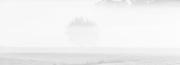 Nebelmorgen 3
