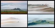 Toscana nella nebbia (2020)