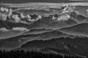 Mountain Mist (2018)